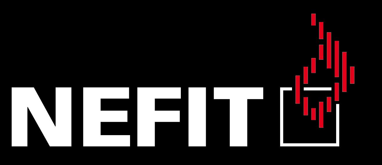 Logo Nefit